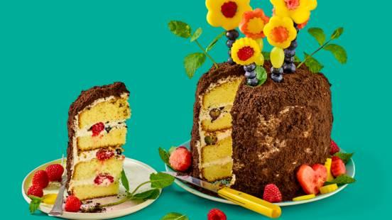 Lente-tuintaart met mascarpone en fruitbloemen