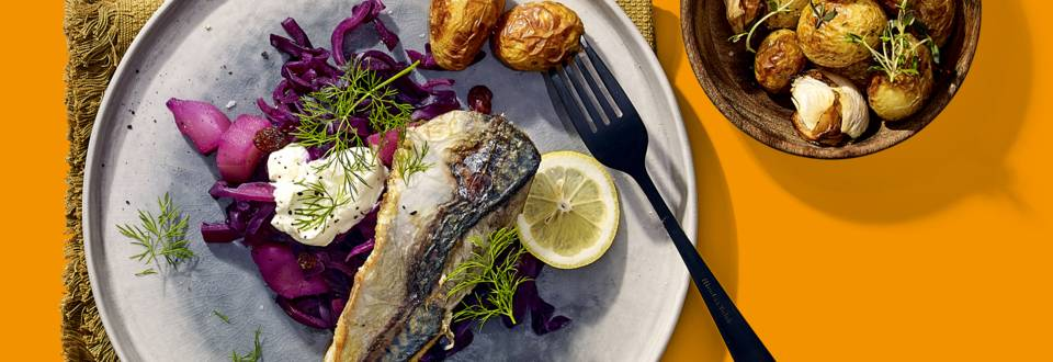 Gebakken makreel met rode kool en culinaire krieltjes
